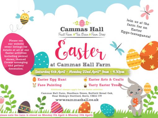 Easter at Cammas Hall