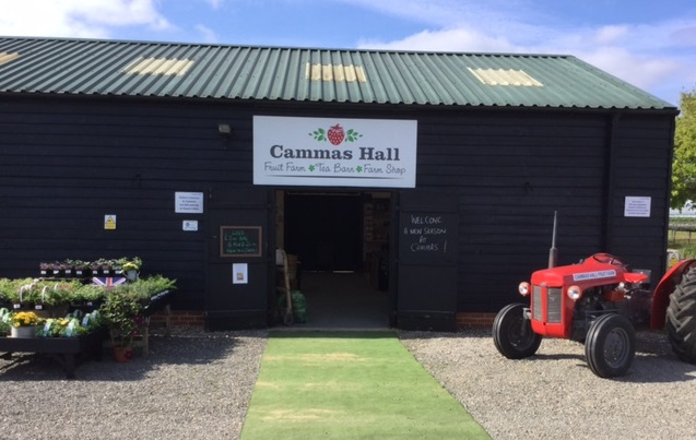 Father's Day at Cammas Hall Farm