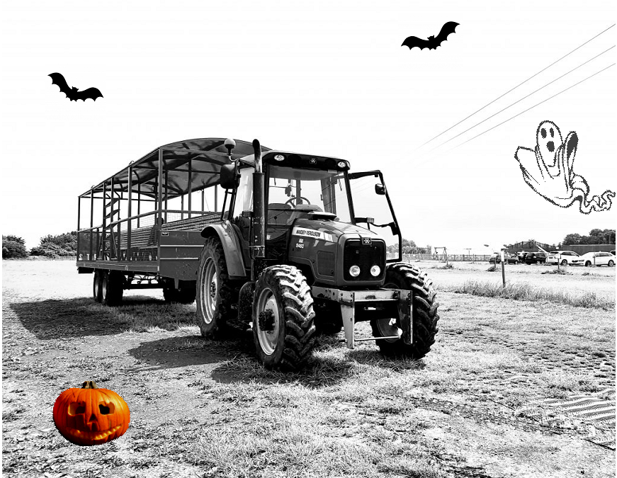Tractor & Trailer Rides to the pumpkin fields