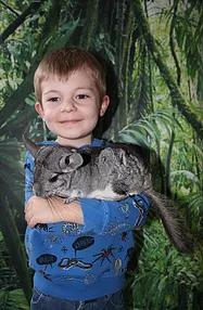Garg's Jungle Tots Animal Show