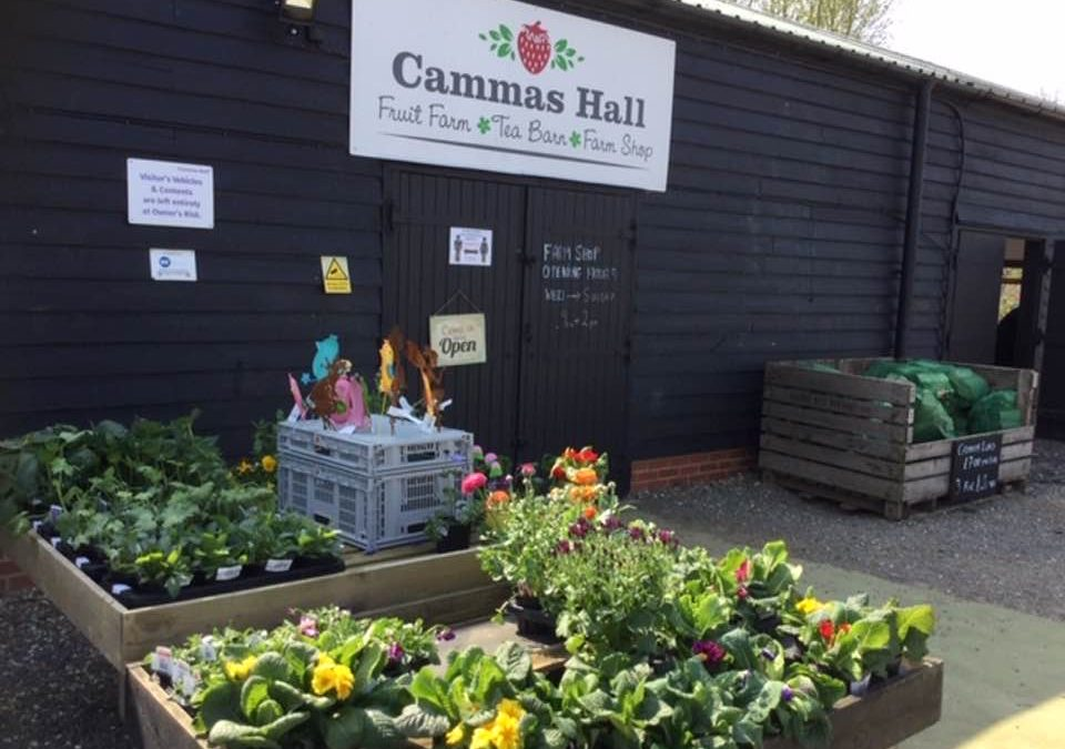 Farm Shop open Easter Sunday 9am to 2pm