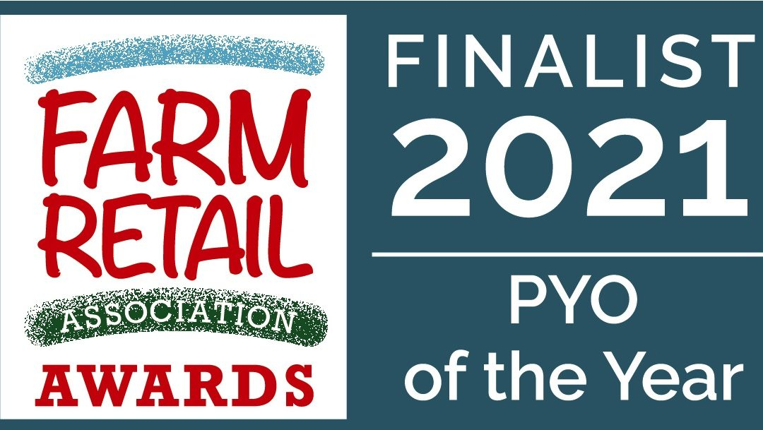 Cammas Hall Farm announced as a finalist for Pick Your Own of the Year in the National Farm Retail Awards