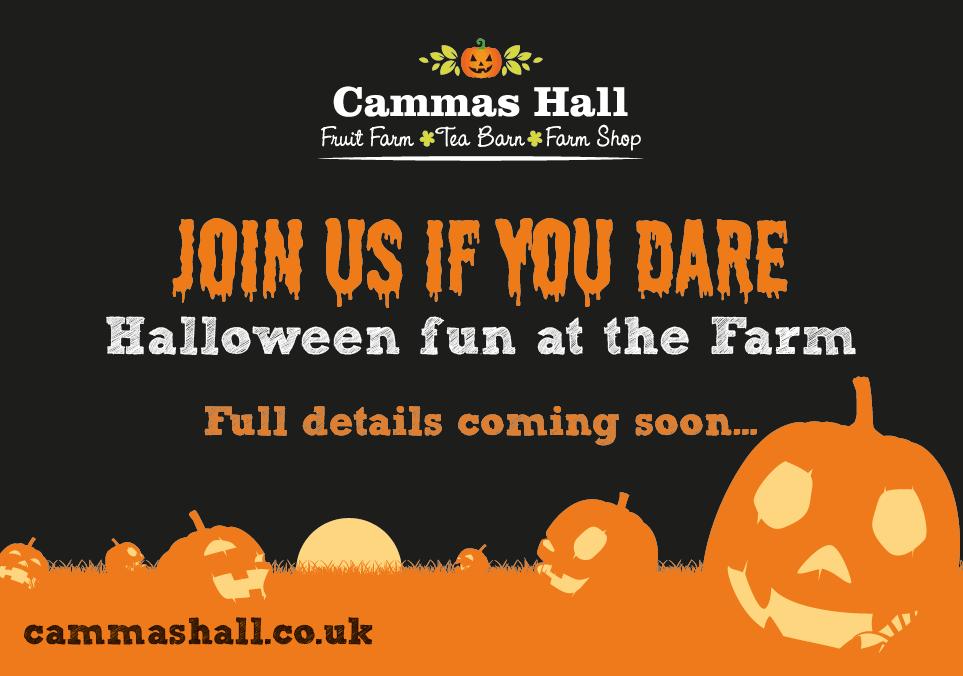 Halloween at Cammas Hall Farm